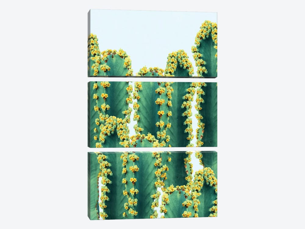 Adorned Cactus by 83 Oranges 3-piece Canvas Print