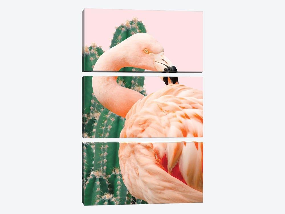Flamingo And Cactus by 83 Oranges 3-piece Canvas Art