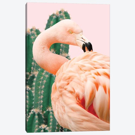Flamingo And Cactus Canvas Print #UMA30} by 83 Oranges Canvas Artwork