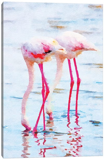 Flamingo Pink Canvas Art Print