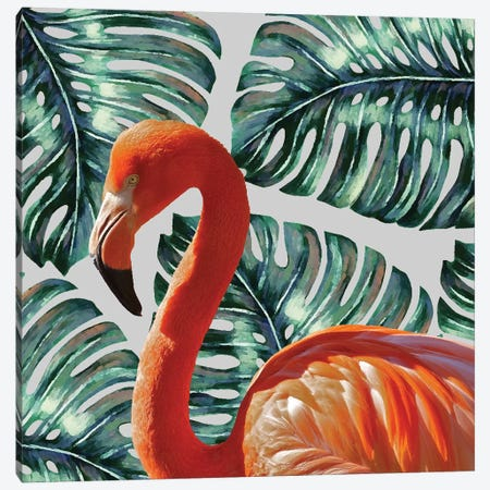 Flamingo Canvas Print #UMA31} by 83 Oranges Canvas Wall Art