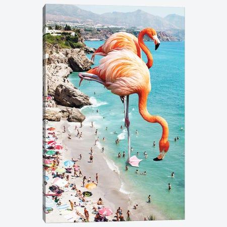 Giant Flamingos On The Beach Canvas Print #UMA32} by 83 Oranges Canvas Artwork