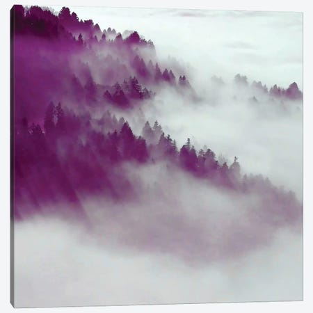 Forest Fog Canvas Print #UMA33} by 83 Oranges Canvas Wall Art