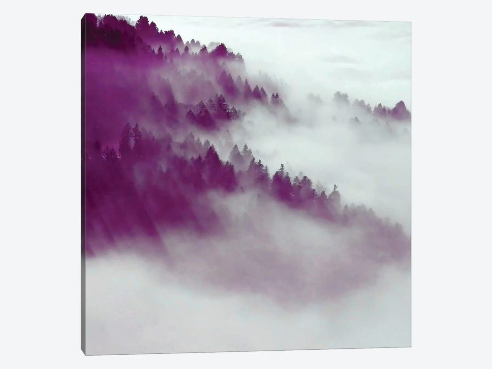 Forest Fog by 83 Oranges 1-piece Canvas Print