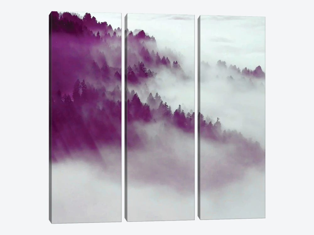 Forest Fog by 83 Oranges 3-piece Canvas Art Print