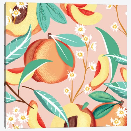 Peach Season Canvas Print #UMA343} by 83 Oranges Canvas Wall Art