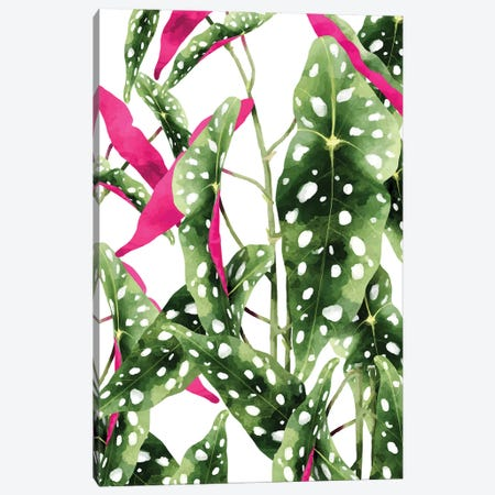 Happiness Is...Buying Plants Canvas Print #UMA351} by 83 Oranges Canvas Print