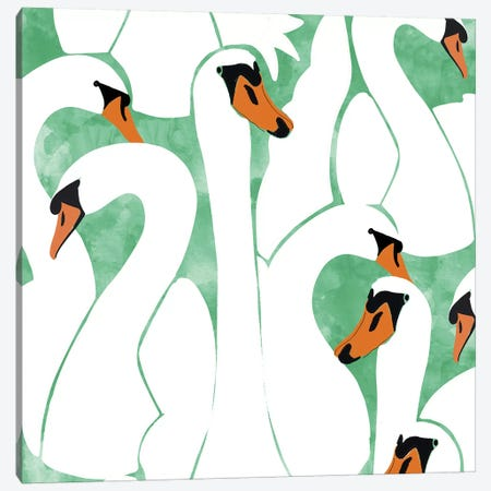 White Calm Was Born Into A Swan Canvas Print #UMA362} by 83 Oranges Canvas Artwork