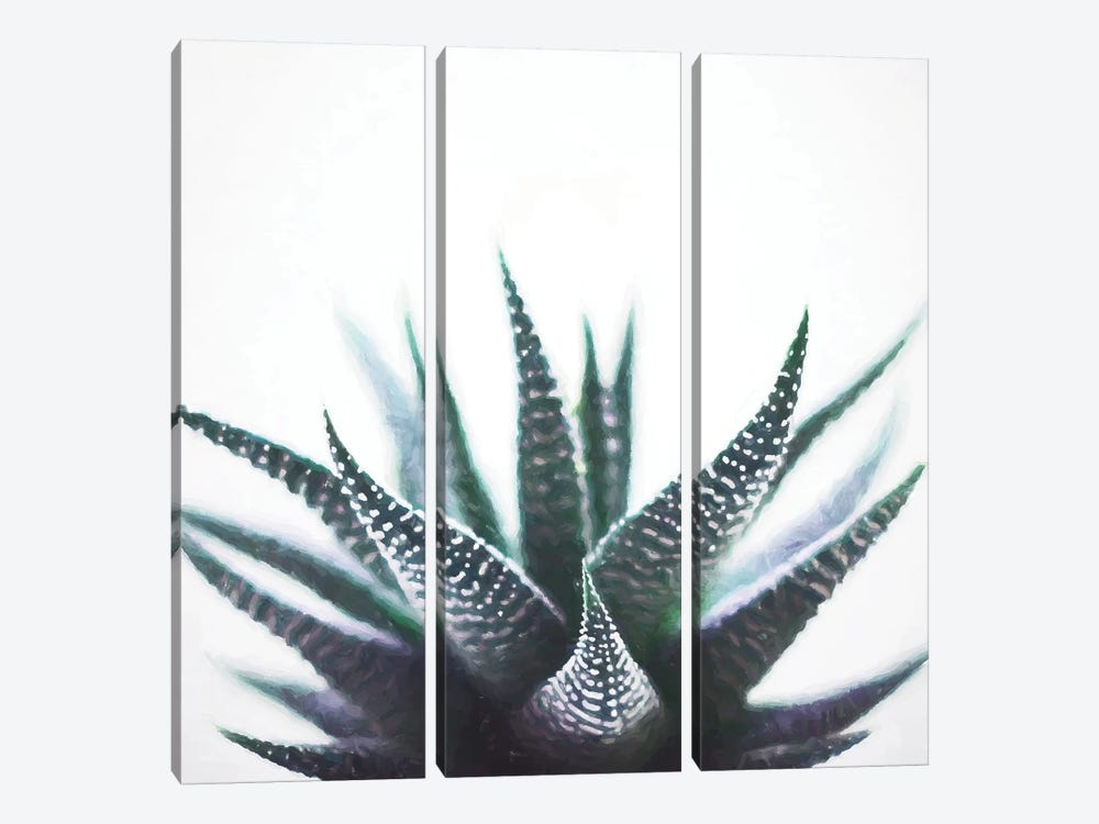 Green Topaz Plant by 83 Oranges 3-piece Canvas Print