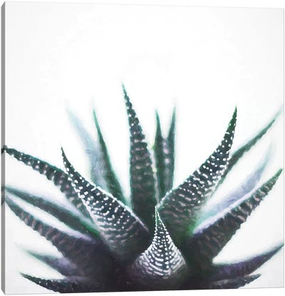 Green Topaz Plant Canvas Art Print