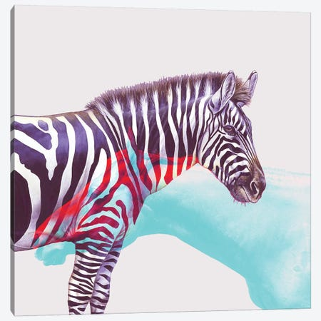 Horse And Zebra Canvas Print #UMA41} by 83 Oranges Art Print