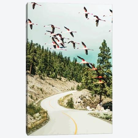 Flamingo Flight Canvas Print #UMA487} by 83 Oranges Canvas Art