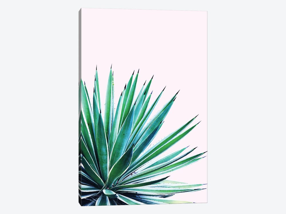 Agave Love by 83 Oranges 1-piece Art Print