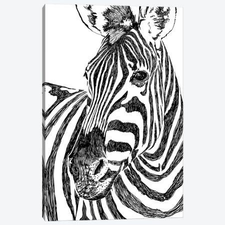 Zebra Canvas Print #UMA531} by 83 Oranges Canvas Art Print