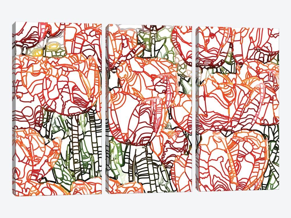 Tulip Garden by 83 Oranges 3-piece Canvas Art