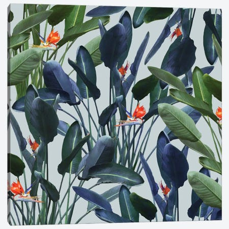 Optical Zen Canvas Print #UMA57} by 83 Oranges Canvas Print