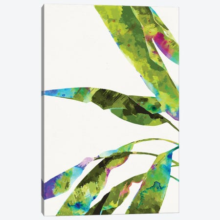 Banana Leaves Holi Canvas Print #UMA590} by 83 Oranges Canvas Art Print