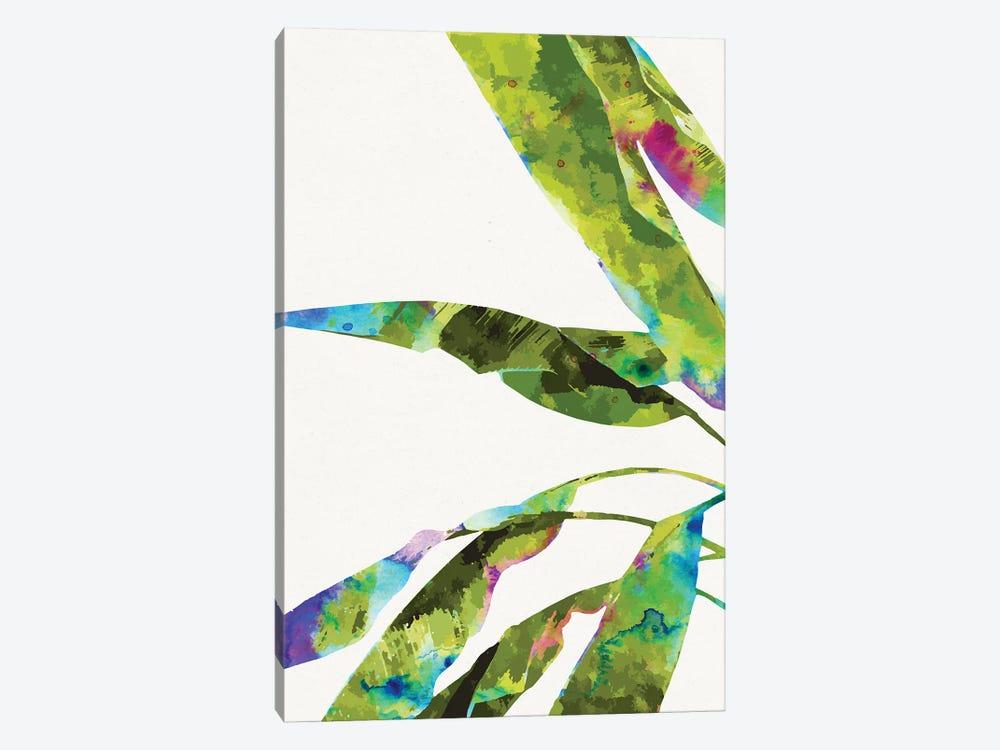 Banana Leaves Holi by 83 Oranges 1-piece Canvas Art Print