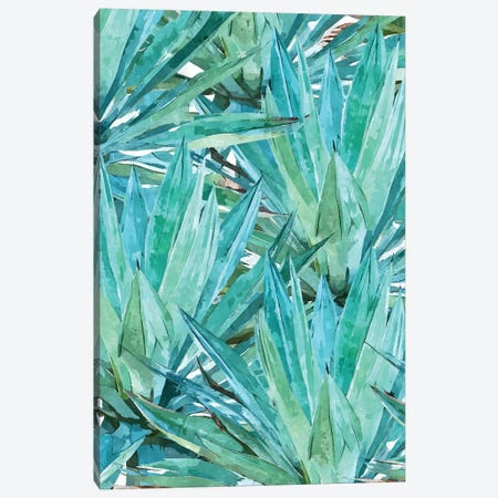 Agave Canvas Print #UMA5} by 83 Oranges Canvas Print