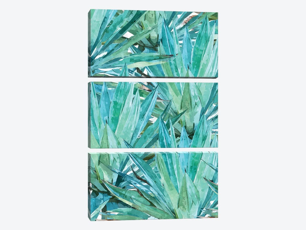 Agave by 83 Oranges 3-piece Canvas Artwork