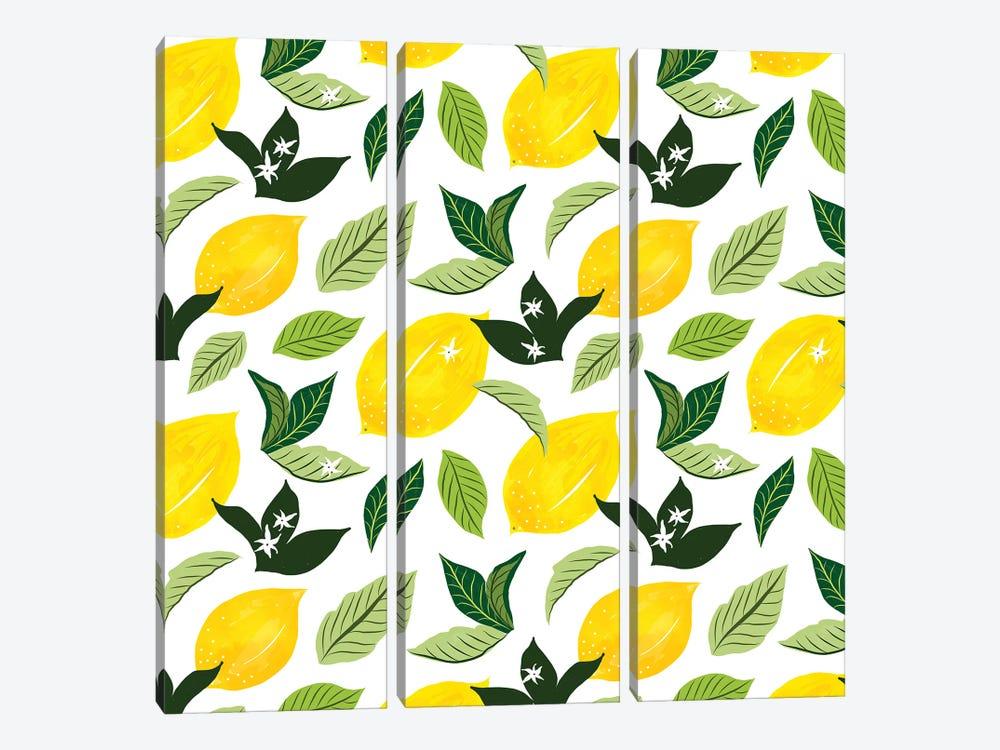 Lemona by 83 Oranges 3-piece Canvas Art Print