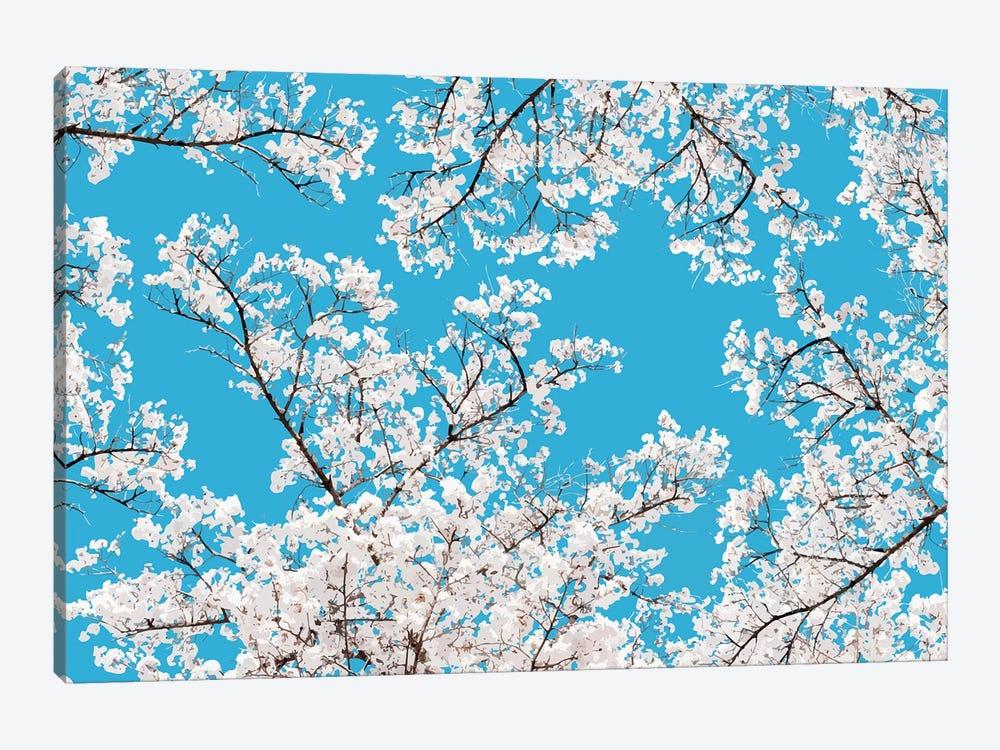 White Blossom by 83 Oranges 1-piece Canvas Artwork