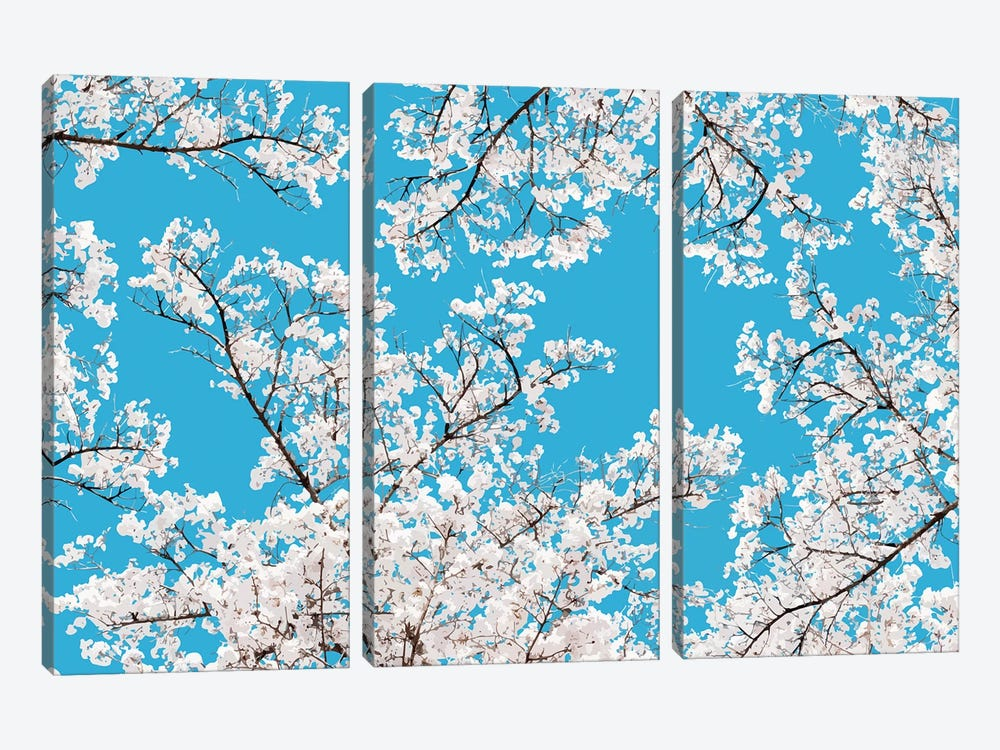 White Blossom by 83 Oranges 3-piece Canvas Art