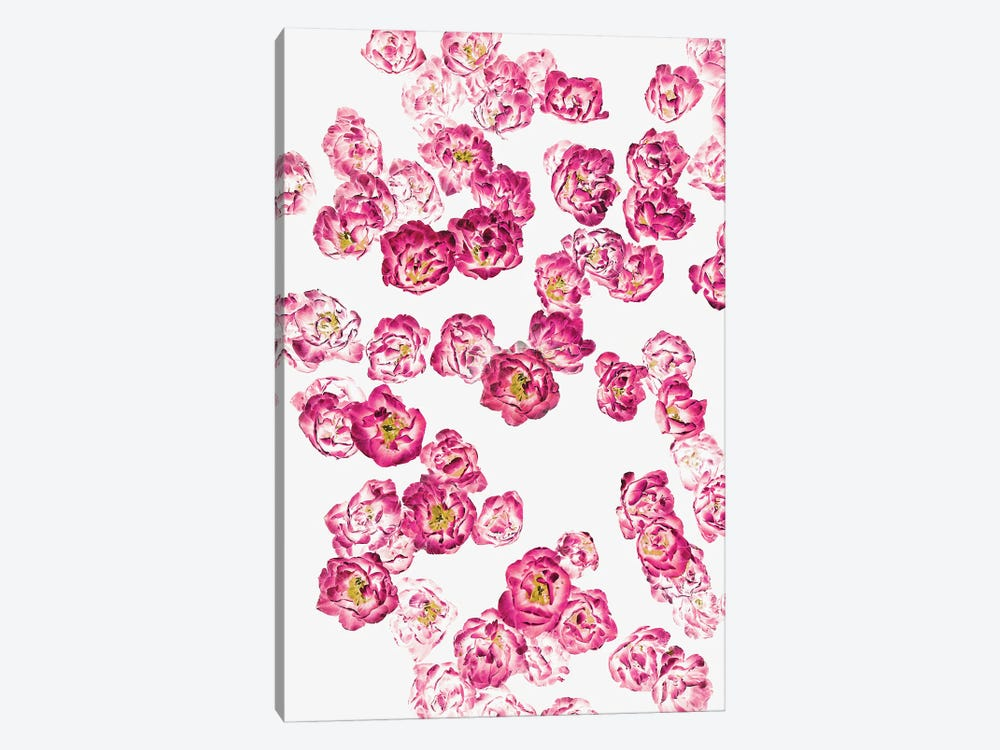Pink Heaven by 83 Oranges 1-piece Canvas Wall Art