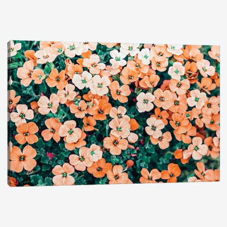 Floral Bliss Canvas Print #UMA670} by 83 Oranges Canvas Art