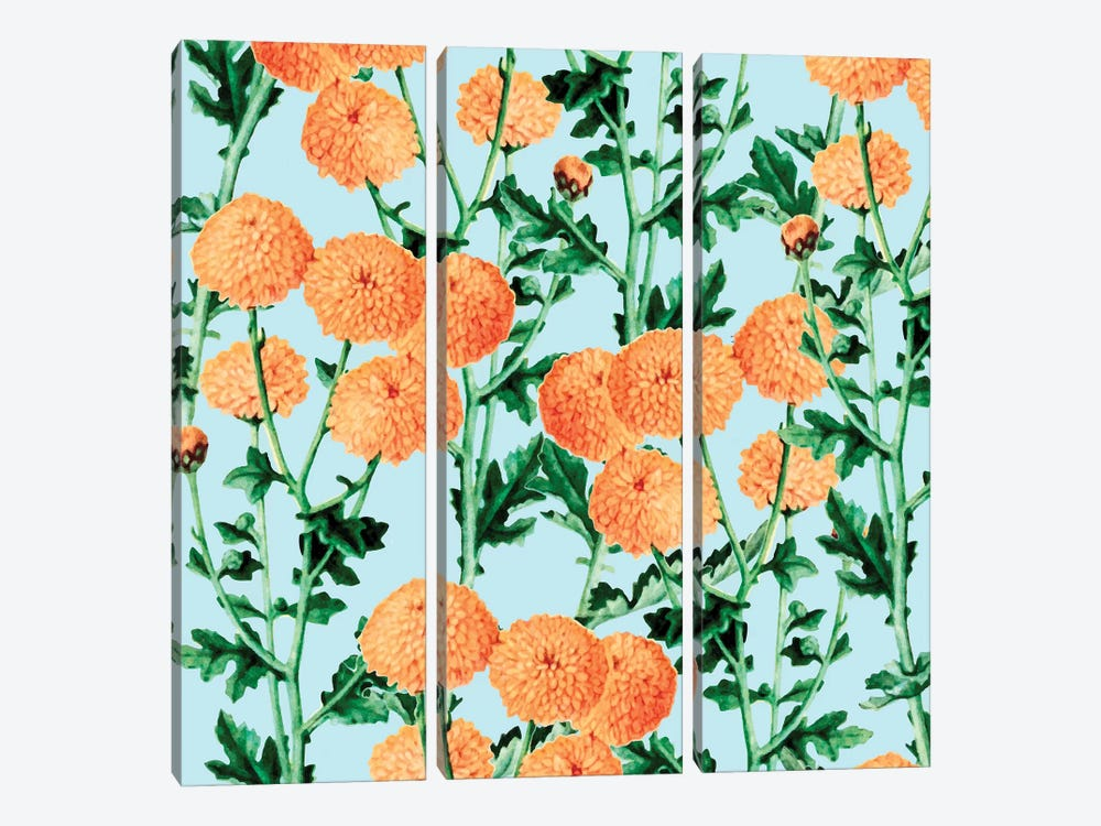 Summer Bloom by 83 Oranges 3-piece Canvas Wall Art