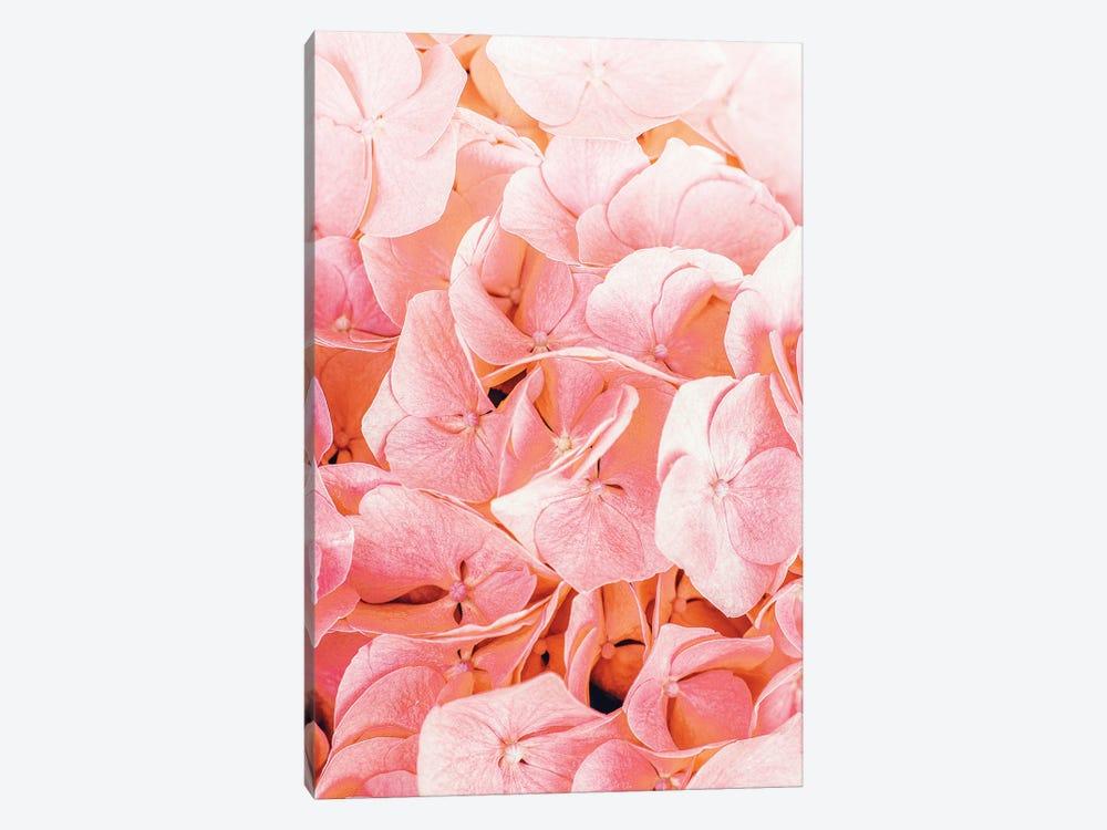 Blushing by 83 Oranges 1-piece Art Print