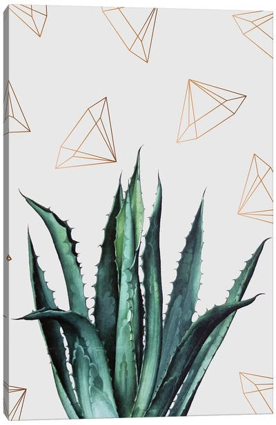 Agave Pattern Canvas Art Print
