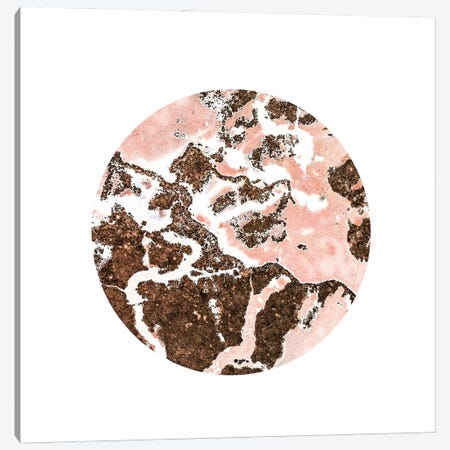 Blush And Bronze Canvas Print #UMA721} by 83 Oranges Canvas Artwork