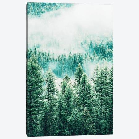 Forest And Fog Canvas Print #UMA722} by 83 Oranges Canvas Wall Art