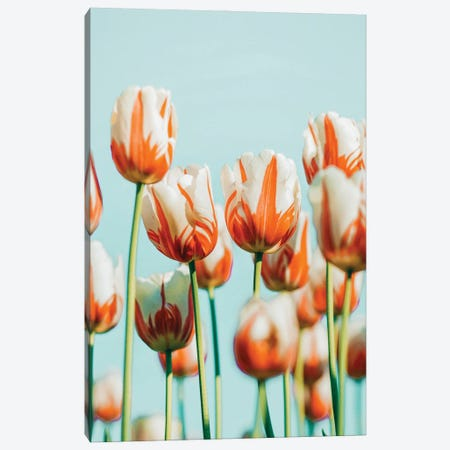 Estelle Canvas Print #UMA729} by 83 Oranges Canvas Art