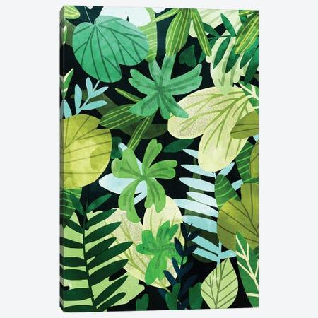 Rainforest Canvas Print #UMA753} by 83 Oranges Art Print