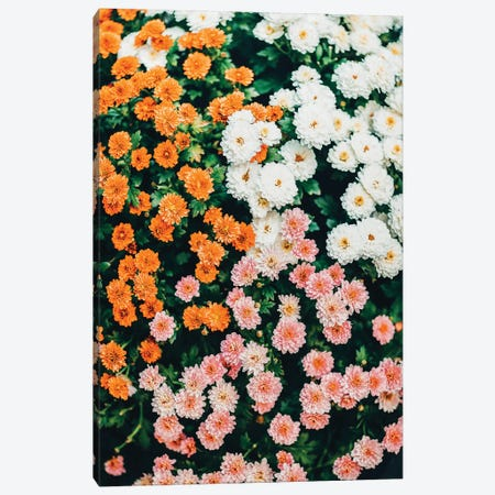 In My Garden Canvas Print #UMA758} by 83 Oranges Art Print