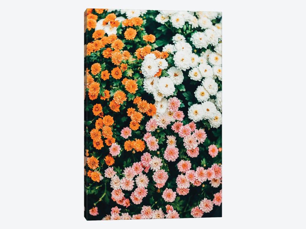In My Garden by 83 Oranges 1-piece Canvas Wall Art