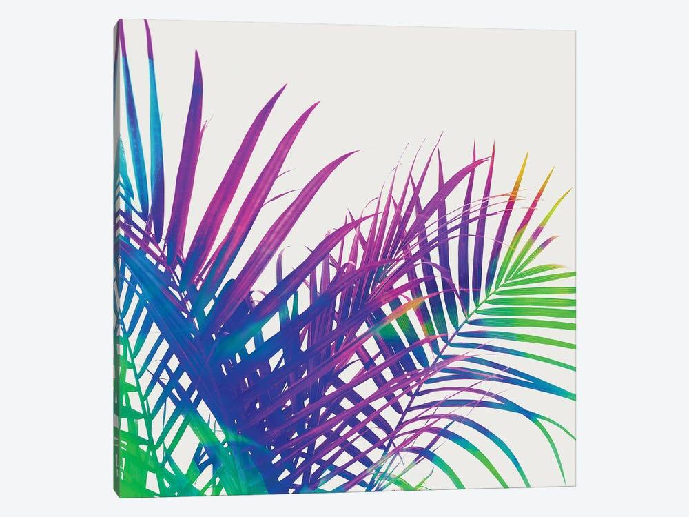 Colorful Palm by 83 Oranges 1-piece Art Print
