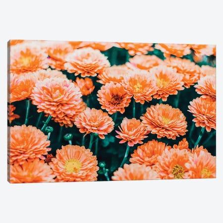 February Canvas Print #UMA792} by 83 Oranges Canvas Art Print