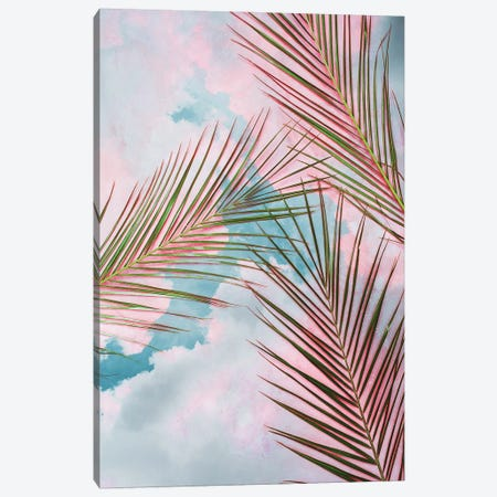 Palms + Sky Canvas Print #UMA794} by 83 Oranges Canvas Wall Art