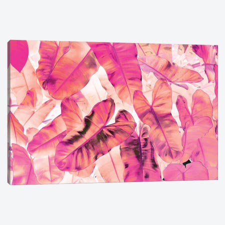 Pink Nirvana Canvas Print #UMA809} by 83 Oranges Canvas Art Print