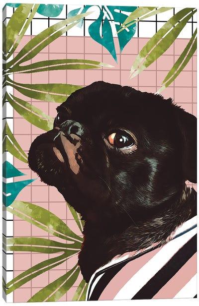Pug On An Island Canvas Art Print