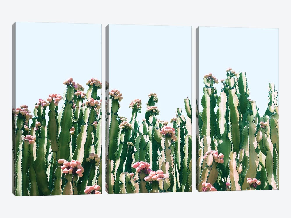 Cactus Blush by 83 Oranges 3-piece Art Print