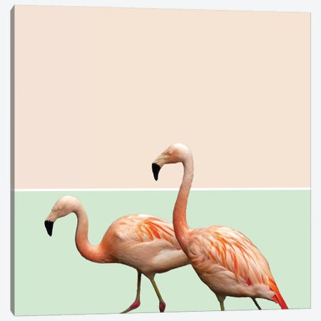 Flamingo Pastel Art Canvas Print #UMA85} by 83 Oranges Canvas Wall Art