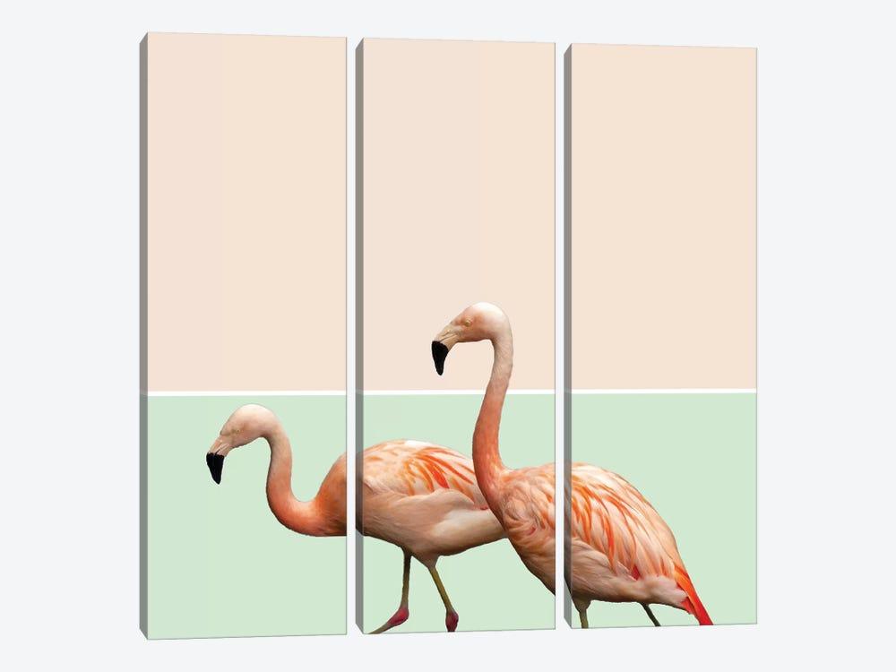 Flamingo Pastel Art by 83 Oranges 3-piece Canvas Art