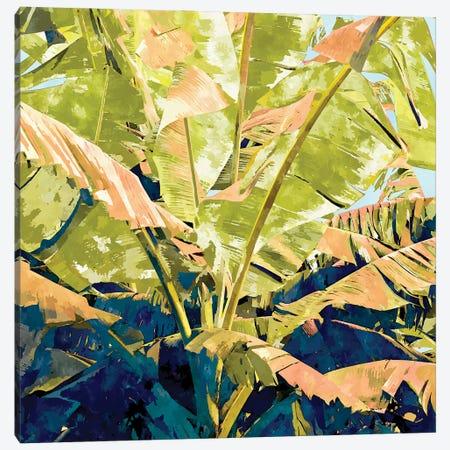Blush Banana Tree, Tropical Banana Leaves Painting, Watercolor Nature Jungle Botanical Illustration Canvas Print #UMA878} by 83 Oranges Canvas Artwork