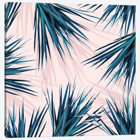 Pointy Palm Canvas Print #UMA923} by 83 Oranges Canvas Art