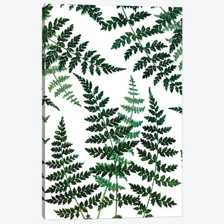 Botanical Bliss Canvas Print #UMA929} by 83 Oranges Canvas Art