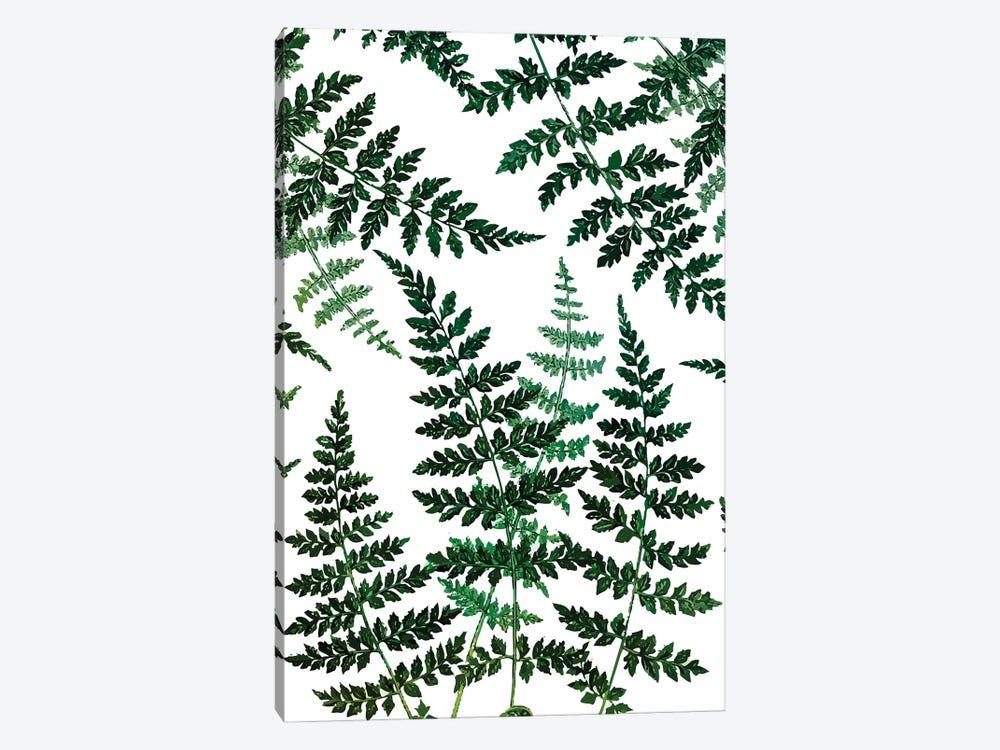 Botanical Bliss by 83 Oranges 1-piece Canvas Print